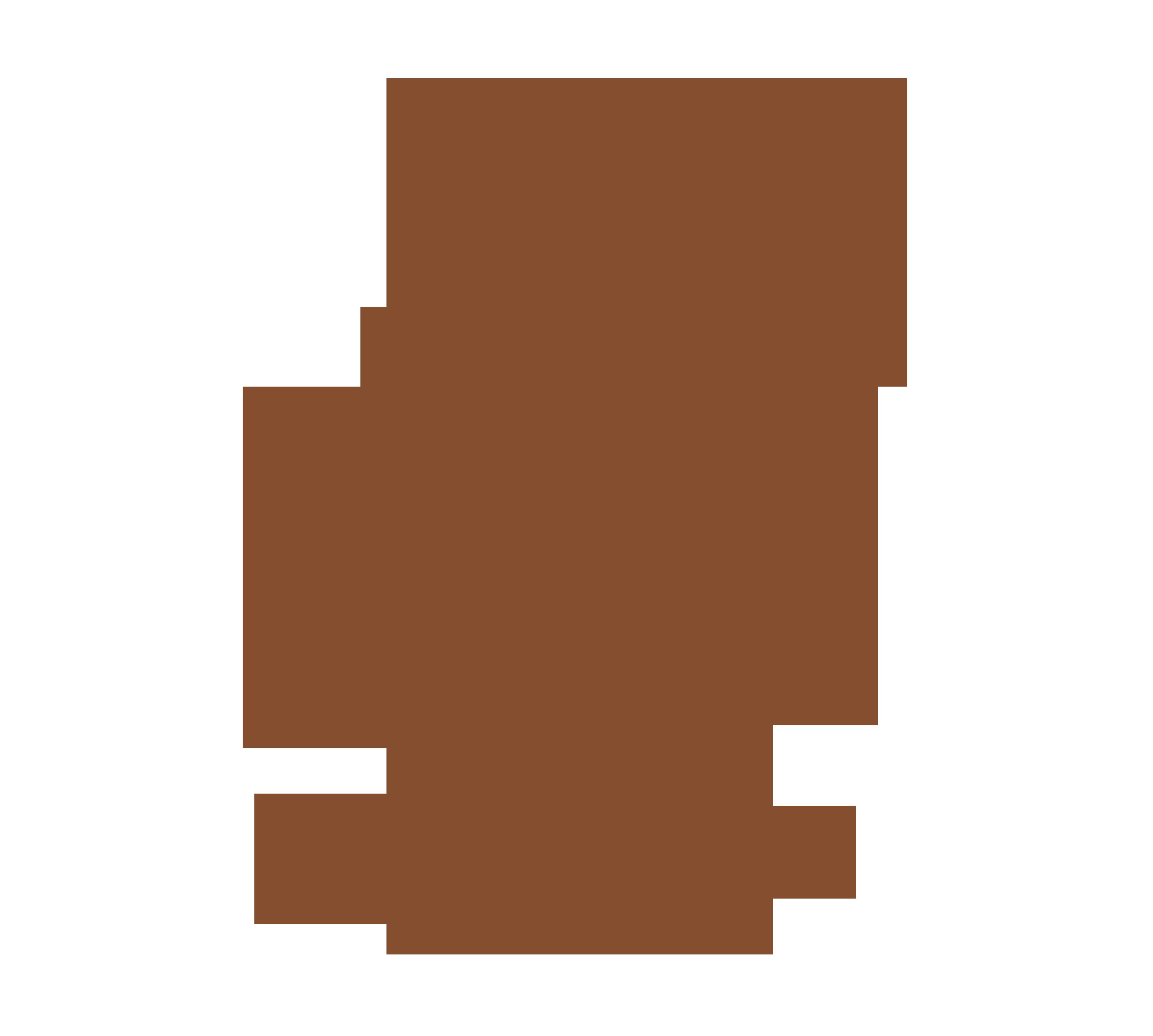 PCUEROS CHILE